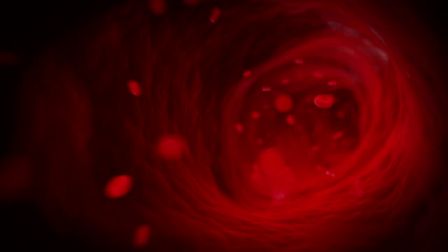 blood flow - human blood stock videos and b-roll footage