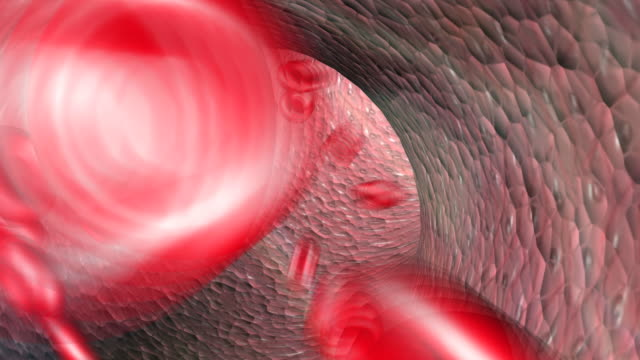 blood moving around the body - human artery stock videos & royalty-free footage