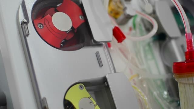 pompa di sangue - rene umano video stock e b–roll