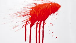 Blood splash on white background