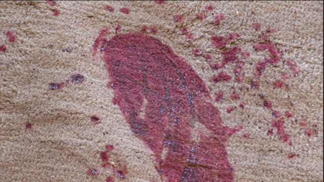 blood spots and footprints stain a carpet. - stained stock videos & royalty-free footage