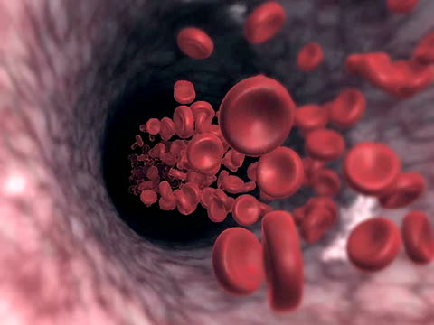 blood stream - biomedical illustration stock videos & royalty-free footage