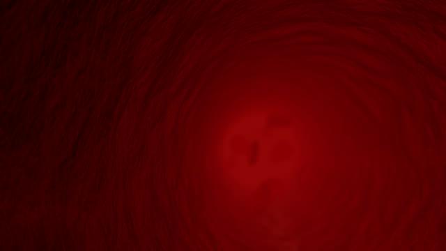 Vaso sanguigno in cellule del sangue rosso