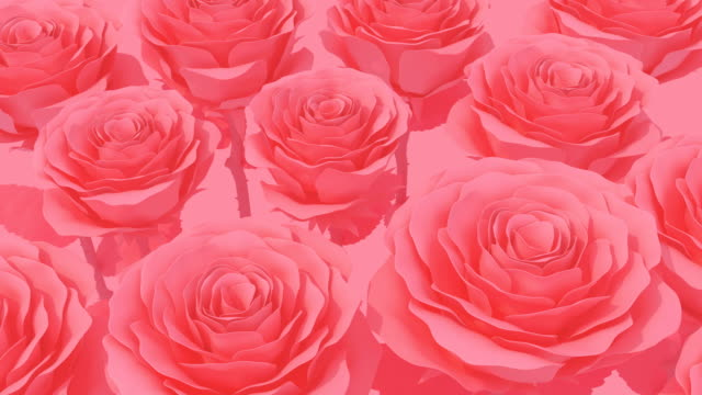 Blooming Red Rose pastel color