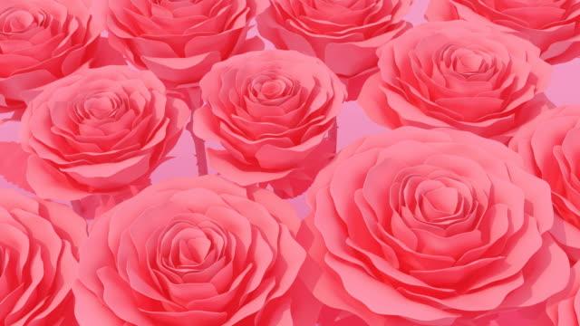 Bloeiende Red Rose pastel kleur