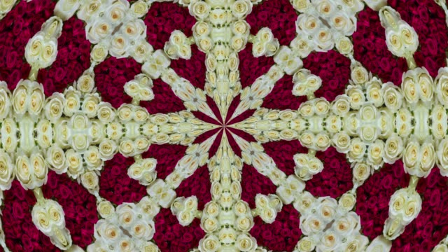 blooming roses loop ready floral pattern background - mandala stock videos & royalty-free footage