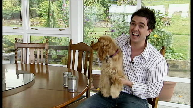 bloopers 2; northern ireland: int pete snodden sitting with dog on his lap, trying to do piece to camera ptc as dog fidgets around / repeated... - working animals stock videos & royalty-free footage