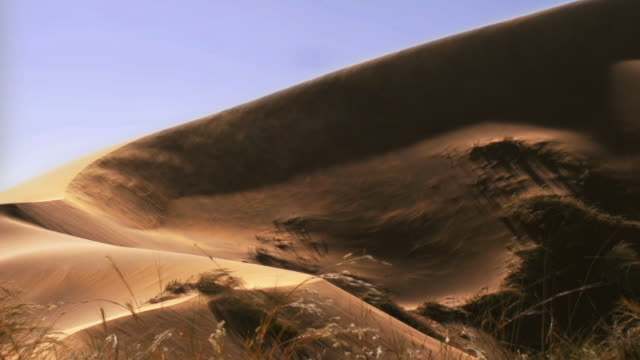 Blowind Sand dune