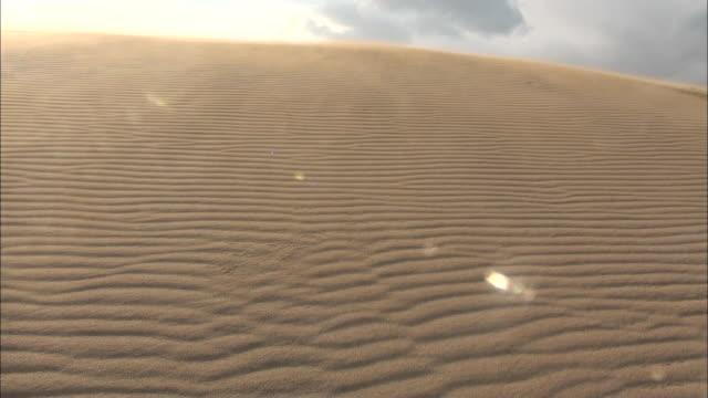 blowing sand, tottori sand dunes, japan - rippled点の映像素材/bロール