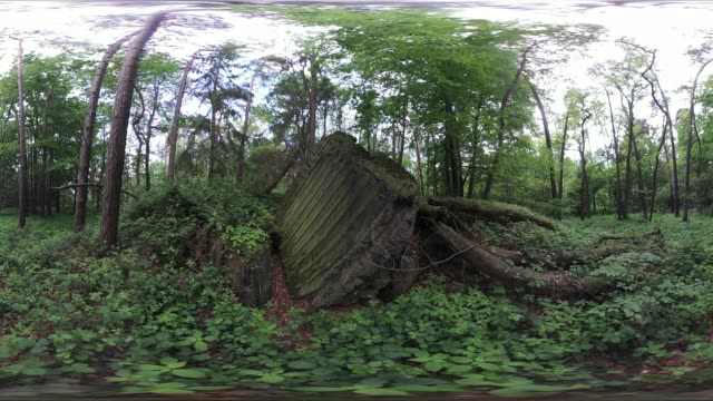 vr360, blown up world war ii bunker in the forest, 360vr - bomb shelter stock videos & royalty-free footage