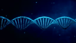 Blue background with rotating DNA. Loop