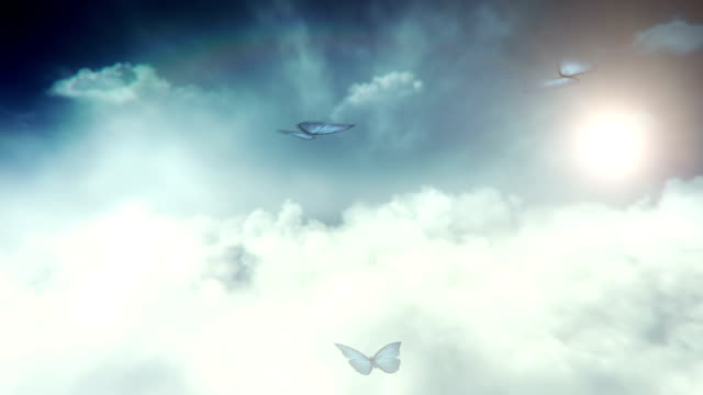 blue butterflies flying (sky) - loop - fantasy stock videos & royalty-free footage