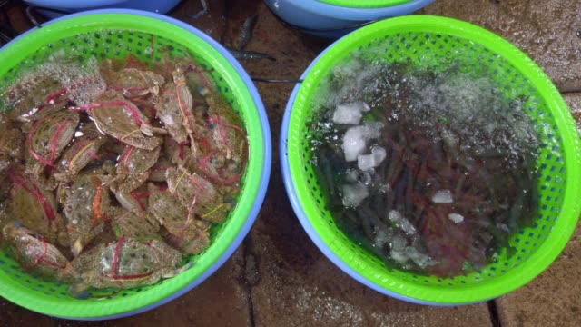 blue crabs, yellow crabs, crabs for sale in quang ninh ,vietnam - wet stock videos & royalty-free footage
