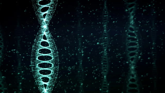 vídeos de stock e filmes b-roll de blue dna strand slow motion - 3d animation - adn