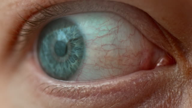 ecu blau auge umherblicken - neugierde stock-videos und b-roll-filmmaterial