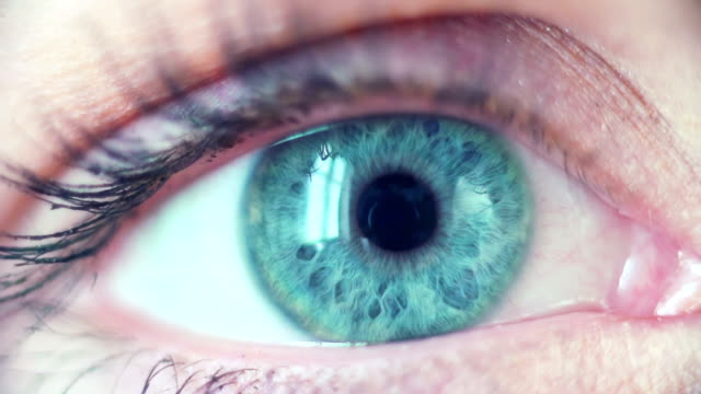 blue eye macro - blue eyes stock videos and b-roll footage