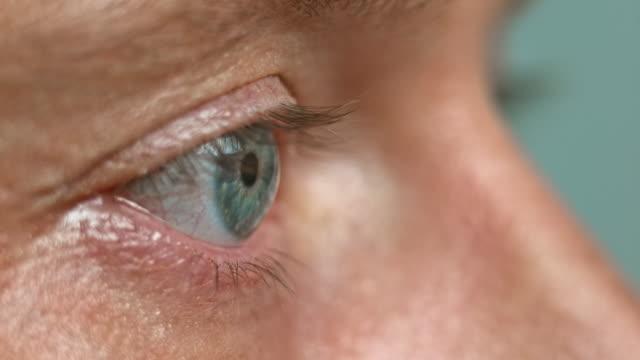 ecu blue eye flyttar, blinkar och stänga - sedd från sidan bildbanksvideor och videomaterial från bakom kulisserna