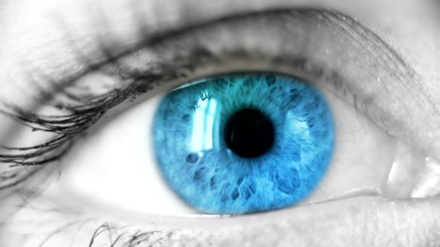 blue eye - focus concept stock videos & royalty-free footage