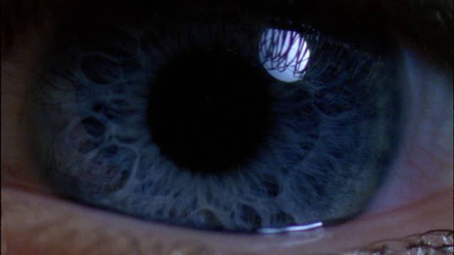 Blue eyes - Movement of the pupil