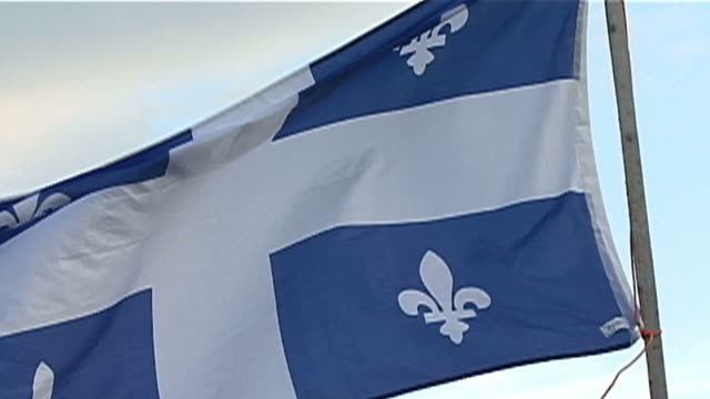 blue flag with a white cross in the middle and the fleur-de-lis symbol on each side - politics icon stock videos & royalty-free footage