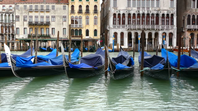 4k blue gondolas on grand canal, venice, italy - grand canal venice stock videos & royalty-free footage