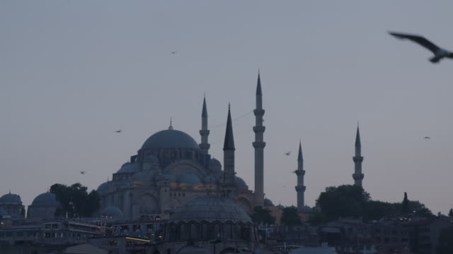 MS of Blue Mosque and birds in Istanbul