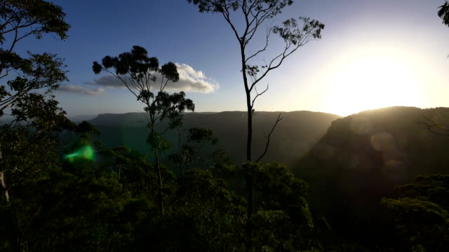 blue mountains, nsw, australia - national park stock videos & royalty-free footage