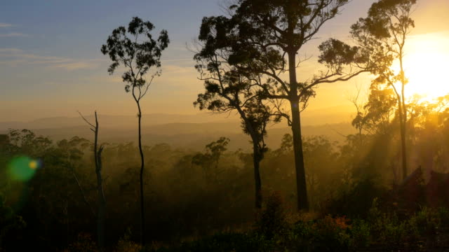 blue mountains, nsw - horizontal stock videos & royalty-free footage