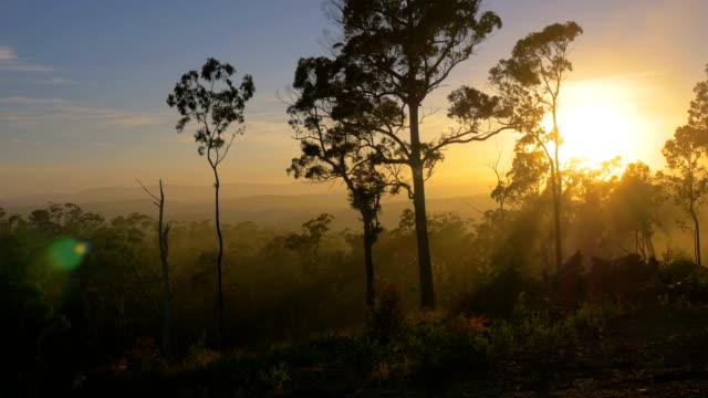 blue mountains, nsw - victoria australia stock videos & royalty-free footage