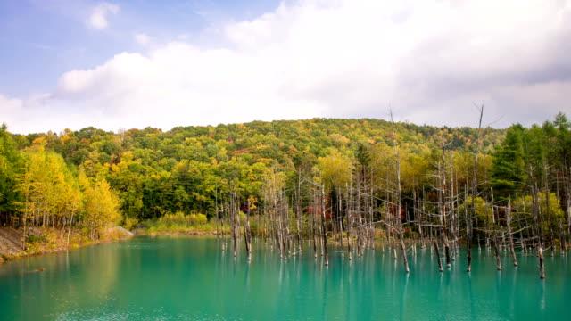 blue pond - hokkaido stock videos & royalty-free footage