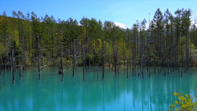 青い池 (Aoiike)、北海道