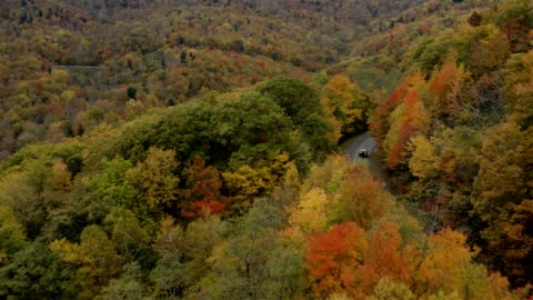 blue ridge parkway in the fall - appalachia stock videos & royalty-free footage