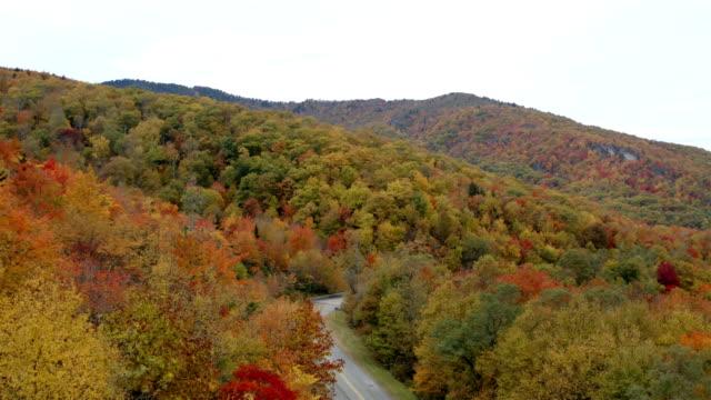 blue ridge parkway på hösten - höstlöv bildbanksvideor och videomaterial från bakom kulisserna