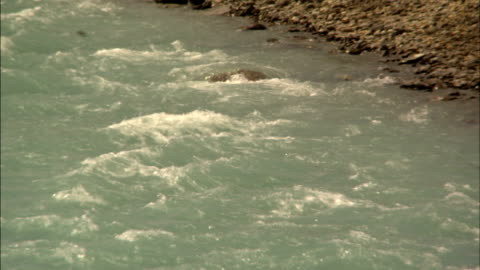 a blue river flows past a rocky riverbank. - riverbank stock videos & royalty-free footage