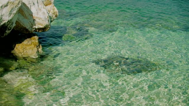 青い海水休日背景
