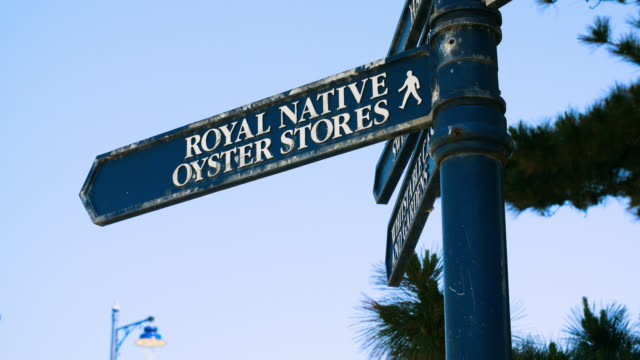 blue signpost in whitstable, kent - direction stock videos & royalty-free footage