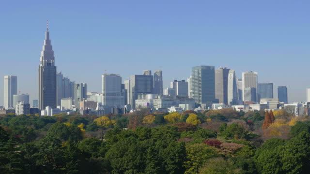 blue sky and tokyo shinjuku buildings - オフィスビル点の映像素材/bロール