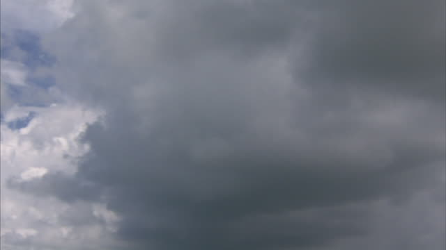 vídeos y material grabado en eventos de stock de blue sky & white cloud next to large storm clouds, gray cloud bottom covering sky. - gulf coast states