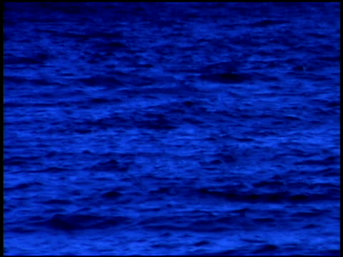 vídeos de stock e filmes b-roll de blue toned cityscape of seattle, washington - space needle