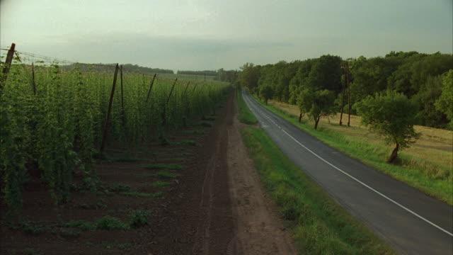 ws ha blue trabant driving on rural road through green fields - osteuropäische kultur stock-videos und b-roll-filmmaterial