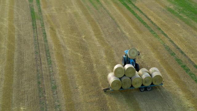 stockvideo's en b-roll-footage met blue tractor collecting hay bales, cayton bay, north yorkshire, england - aanhangwagen