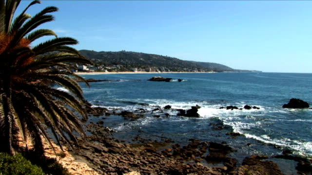 blue waves roll into a tropical rocky shore. - fan palm tree stock videos & royalty-free footage