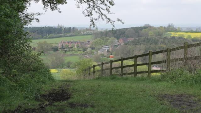 bluebells wood at felley priory, nottinghamshire, england, uk, europe - ノッティンガム点の映像素材/bロール