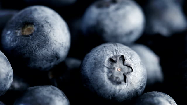 blueberries macro loop (full hd) - freshness stock videos & royalty-free footage