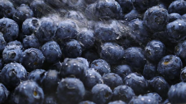 blueberries rinsed with water - spraying stock videos and b-roll footage