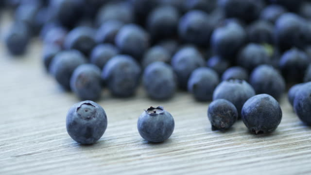blueberries - blueberry stock videos and b-roll footage