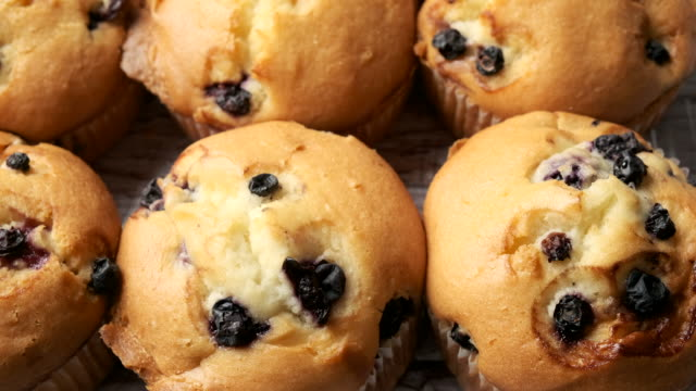 blueberry muffins close up - blueberry muffin stock videos & royalty-free footage