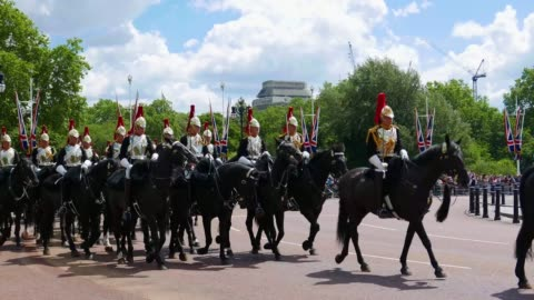 blues and royals cavalry - royalty stock videos & royalty-free footage