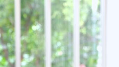 oskärpa bakgrund av office rum fönster se genom trädgården - boningsrum bildbanksvideor och videomaterial från bakom kulisserna