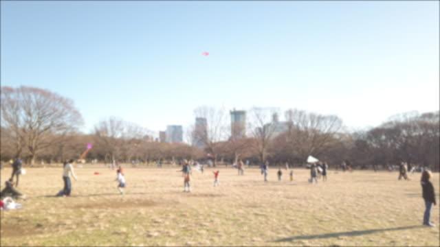 4k blur panning.yoyogi park in tokyo , japan . - satoyama scenery stock videos & royalty-free footage